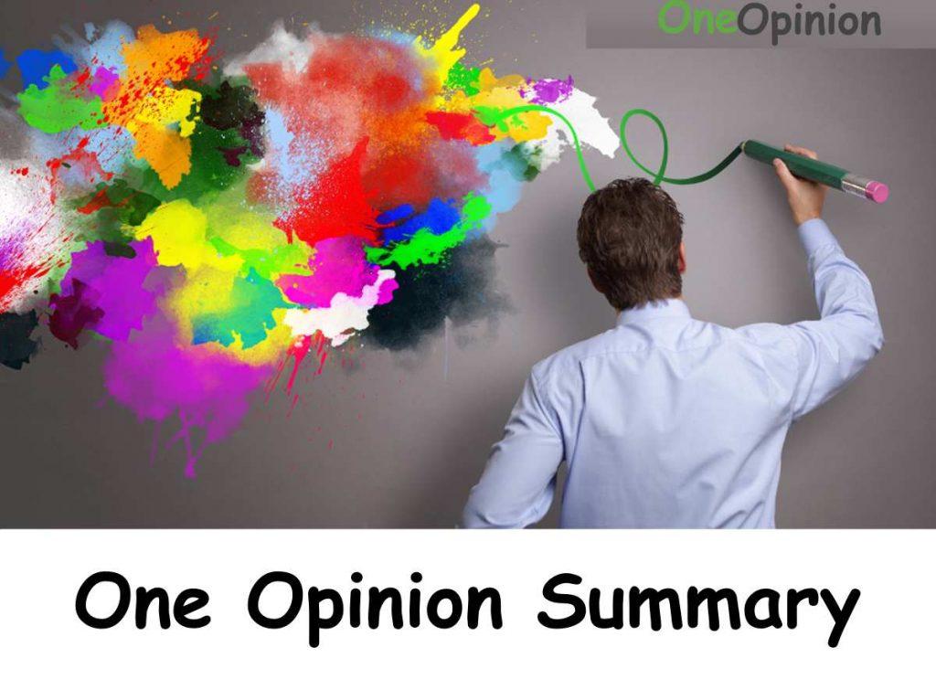 One Opinion Summary