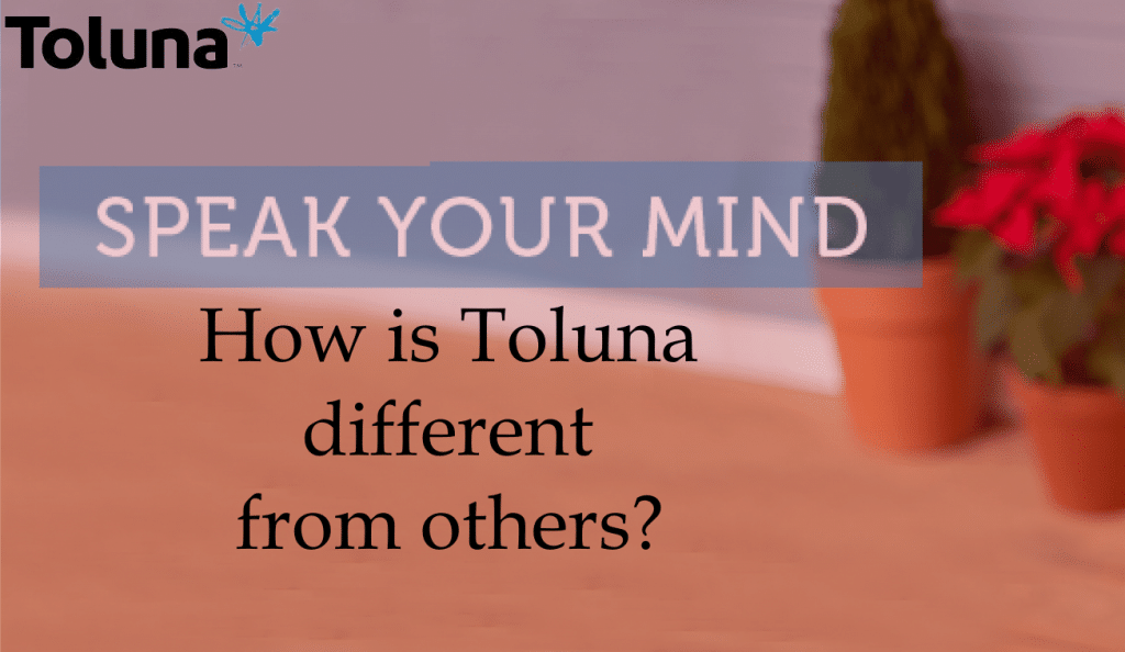 How is Toluna different from others?