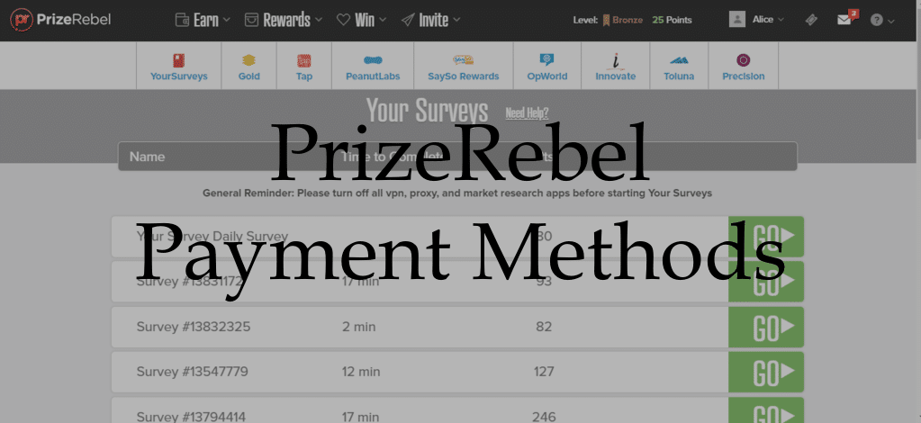 PrizeRebel Payment Methods
