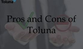 Pros and Cons of Toluna