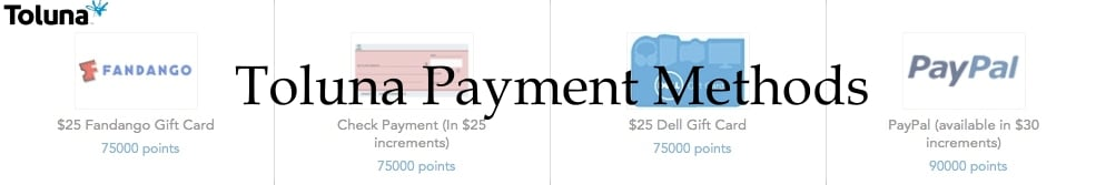 Toluna Payment Methods
