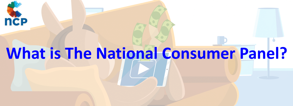 What is The National Consumer Panel?