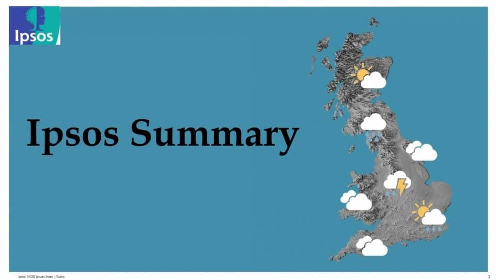 Ipsos Summary