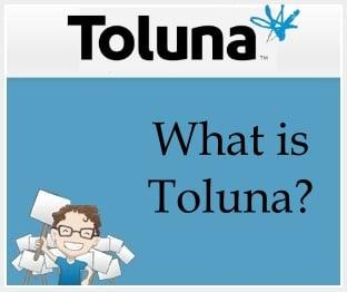 What is Toluna