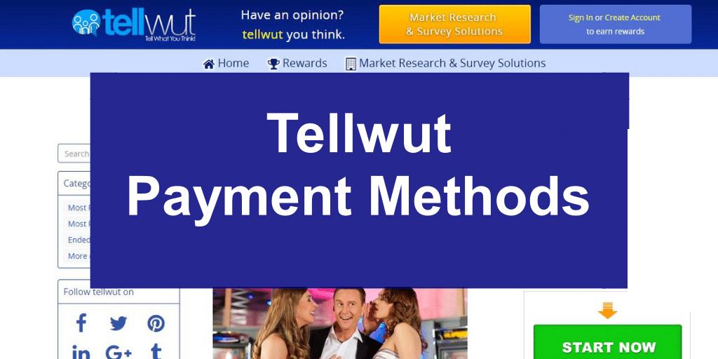 Tellwut Payment Methods